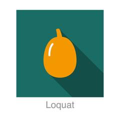 Loquat fruit flat icon design