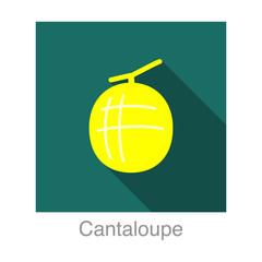 Cantaloupe fruit flat icon design