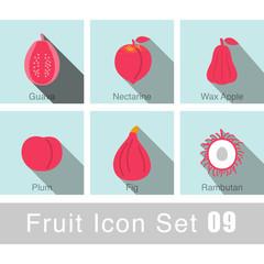 Fruit icon design set