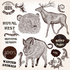 Collection of hand drawn animals, labels and swirls in antique s