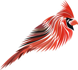 Red Cardinal Isolated