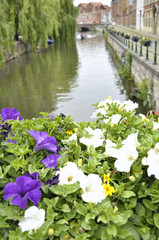 Canal of the medieval city of Ghent, Belgium