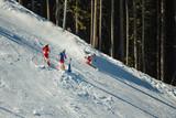 Fototapeta Downhill skiers on  piste