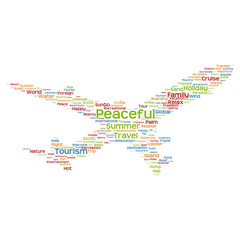 Conceptual peaceful  travel or tourism plane word cloud