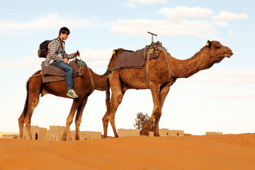 Camel trek through the desert of Morocco