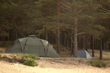 tourist tents on a green grass