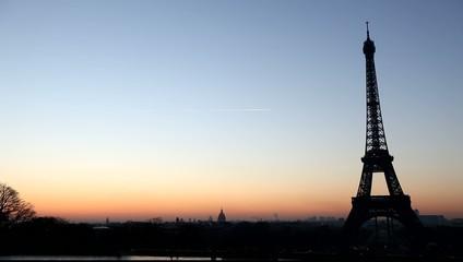 Birds at Eiffel tower at sunrise, Paris