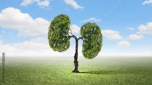 canvas print picture Air pollution