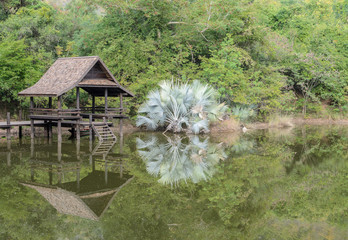 Thai pavillion in the park with reflection