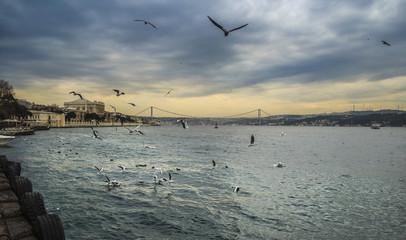 Bosphorus bridge view. Istanbul.