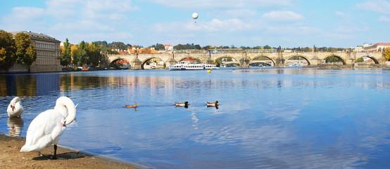 Panorama of Charles Bridge in Prague