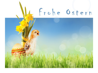 Chicken, daffodils and painted Easter egg