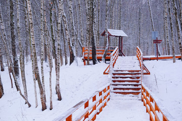 wooden staircase in the winter forest