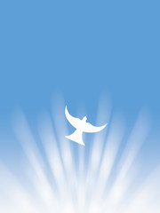 easter holy spirit peace white dove and sun rays illustration