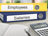 employees and salaries binders poster