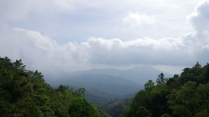 Time-lapse footage of cloud flow over the forest, Thailand