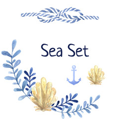 Hand drawn watercolor sea set. With water plant and shell anchor