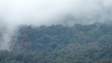 Time-lapse of cloud movement on the tropical rain forest