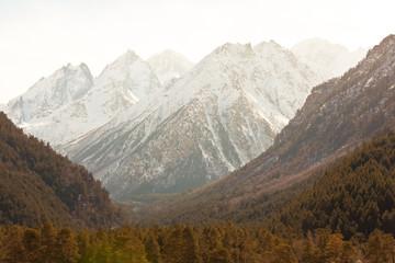 Caucasus landscape