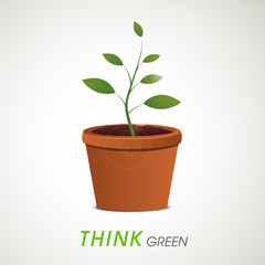 Save Nature concept with green plant in pot.