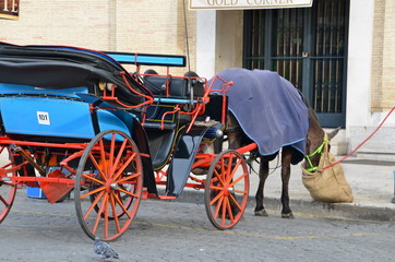 Carriage to explore the city of Rome, Italy