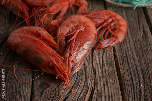 Papiers peints Coquillage Camarón Shrimp Gambero rosso