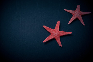 Red starfishes on the old black shabby background. Toned