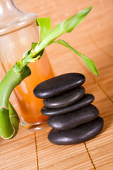Wellness - Hot Stones