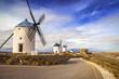 spanish windmills. Cosuegra