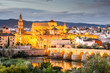 Cordoba, Spain Mosque - Cathedral Skyline