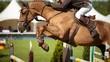 Equestrian - 76208996