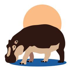 hippopotamus_illustration