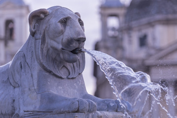 The lion fountain on Piazza del Popolo in Rome, Italy.