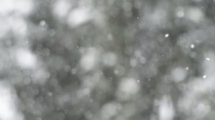 Snow Flurry / Drifting Snow