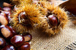 canvas print picture - Chestnuts on an old board.