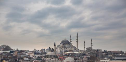 Suleymaniye Mosque and istanbul skyline, Turkey