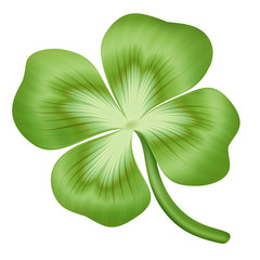 abstract green clover leaf illustration, isolated on white