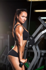 beautiful sports fitness girl  in the gym, triceps
