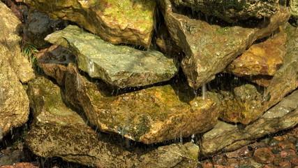 Stones, moss, drops, water. 4K.