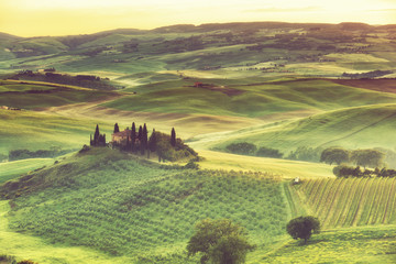 Sunrise over rural house with vineyards in San Quirico d'Orcia