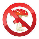 No dangerous toxin sign. Red poison mushroom sign isolated poster