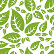 leaf seamless pattern - 76227346