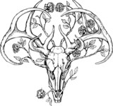 black and white deer skull with horns in graphic style decorated - 76227988