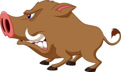 Wild boar cartoon