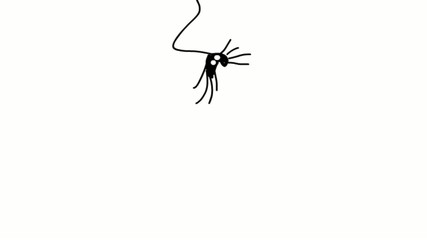 jumping spider cartoon