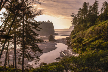 Ruby Beach Landscape