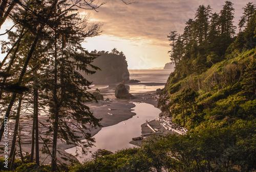 Tuinposter Natuur Park Ruby Beach Landscape
