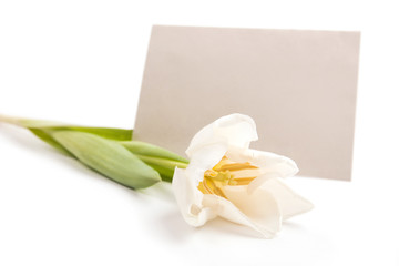 Letter with flower