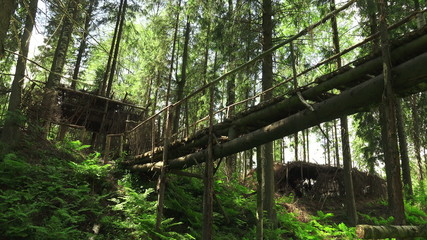 Wooden bridge over the cliff in the forest. 4K.