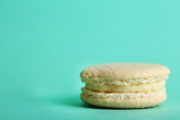 Gentle colorful macaroon on color background